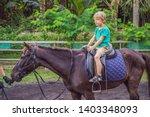 boy horseback riding ... | Shutterstock . vector #1403348093