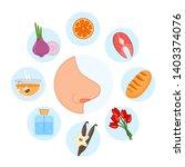 sense organs. smell. vector... | Shutterstock .eps vector #1403374076