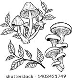 set of poisonous mushrooms line ... | Shutterstock .eps vector #1403421749