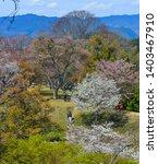 yoshino  japan   apr 4  2019....   Shutterstock . vector #1403467910