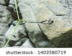 Climbing Quickdraw On A Rock