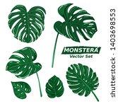 monstera leaves plant... | Shutterstock .eps vector #1403698553