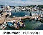 Maine Marina   Boats Of Many...