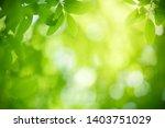 closeup nature view of green... | Shutterstock . vector #1403751029