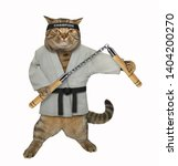 the cat karate fighter in a... | Shutterstock . vector #1404200270