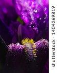 spring spirit  macro part of... | Shutterstock . vector #1404269819