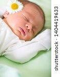 baby sleeps tender daisy care | Shutterstock . vector #1404419633
