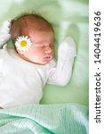 baby sleeps tender daisy care | Shutterstock . vector #1404419636