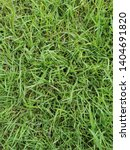 top view of green grass in the... | Shutterstock . vector #1404691820