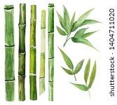 Set Of Green Bamboo Stalks Of...