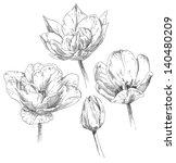 hand drawing tulip flower... | Shutterstock .eps vector #140480209