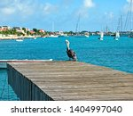Pelican On A Wooden Dock In Th...