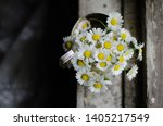 Bouquet Of Chamomile In The...
