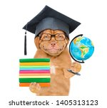graduated dog with eyeglasses...   Shutterstock . vector #1405313123