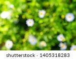 abstract blurred   defocused of ... | Shutterstock . vector #1405318283