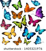 Vector Colorful Butterfly Wing...