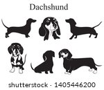 Dachshund Set. Collection Of...