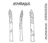 linear sketch raw asparagus....   Shutterstock .eps vector #1405633256