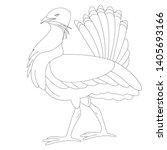 Bustard Bird .vector...