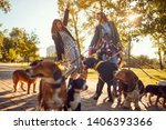 Stock photo happy girls enjoying with dogs while walking outdoors 1406393366