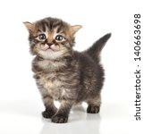 beautiful cute 20 days old... | Shutterstock . vector #140663698