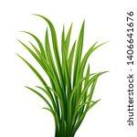 realistic vector fresh green... | Shutterstock .eps vector #1406641676