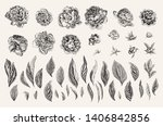 vintage vector botanical... | Shutterstock .eps vector #1406842856