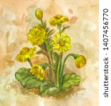yellow spring field flowers.... | Shutterstock . vector #1407456770