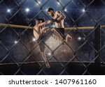 Stock photo mma boxers fighters fight in fights without rules in the ring octagons 1407961160