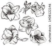 collection of hippeastrum... | Shutterstock .eps vector #1408122146