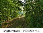 English Country Lane. Canopy Of ...