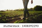 A Farmer Walks Across A Field...