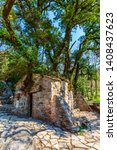 Small photo of Agia Theodora of Vasta miracle church in Peloponnese, Greece. Trees growing on the roof without roots inside