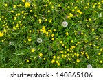 Yellow Buttercup Meadow Top...