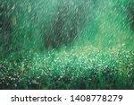 Heavy Rain Shower On Meadow...