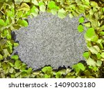 green autumn leaves frame with... | Shutterstock . vector #1409003180