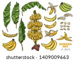 Bananas Tree And Tropical Frui...