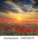 poppy filed on sunset sky... | Shutterstock . vector #140918179