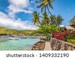 Bequia Island With Palm Trees...