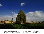 the cypress of abarkuh also... | Shutterstock . vector #1409438390