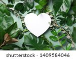 Tropical Nature Background With ...