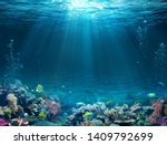 Underwater Scene   Tropical...