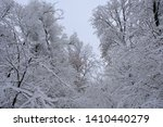 winter landscape with trees... | Shutterstock . vector #1410440279