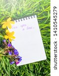 """Small photo of Notepad is lying on the green grass. Summer bright sunny cozy still life. The inscription on the notebook is marked with the marker """"Once upon a time."""" The concept of writing original stories."""