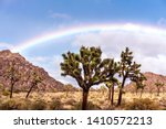 fantastic rainbow over joshua... | Shutterstock . vector #1410572213