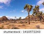 joshua tree national park... | Shutterstock . vector #1410572243