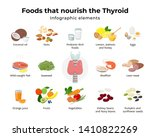 healthy foods for thyroid  set... | Shutterstock .eps vector #1410822269