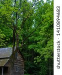 Small photo of Historical cabin on the settler Templeton homestead in Cades Cove Valley in Tennessee's Great Smoky Mountains.