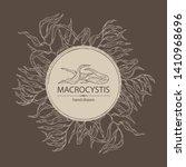 background with macrocystis ...   Shutterstock .eps vector #1410968696