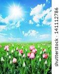 floral landscape | Shutterstock . vector #141112786